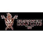 Пуловер (муж) Golfino'8  красный (363) 2216012 logo MCGK