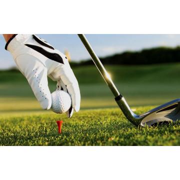 Перчатки для игры в гольф: зачем они нужны и как выбрать