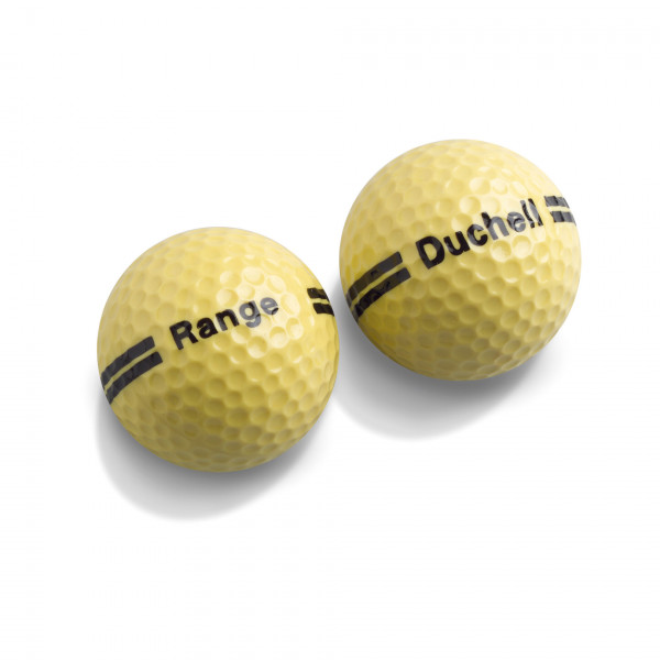 Мяч Srixon'20  Double Lines RANGE (2pc) желтый